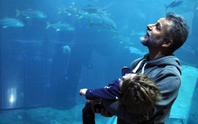 Duds enjoying The National Marine Aquarium, Plymouth Dec 2014